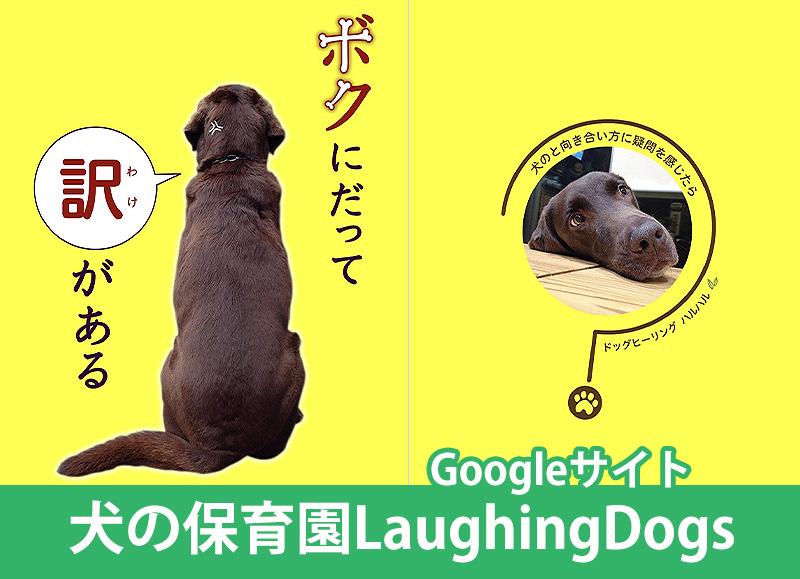 犬の保育園LaughingDogs(犬のしつけ&トリミング&ペットホテル&ペットシッター)